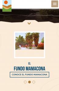 diseño-web-mamacona-4