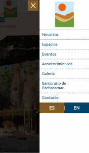 diseño-web-mamacona-6