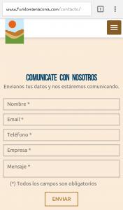 diseño-web-mamacona-7
