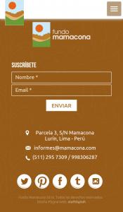 diseño-web-mamacona-8