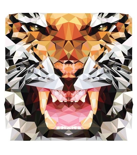 patrones-gloriosos-diseño-6